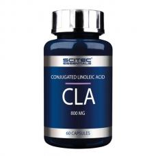 CLA 800 mg (60 капсул) Scitec Nutrition